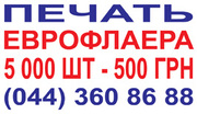 Печать еврофлаера 5 000 шт- 500 грн.