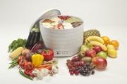 Ezidri Snackmaker - сушилка для фруктов, овощей и др.