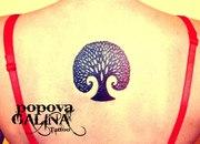 Татуировки. Пирсинг. Киев