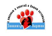 Стрижка собак Киев