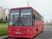 Новый автобус МАЗ-152 062 экспортный вариант
