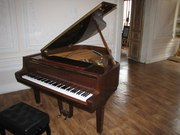 купить рояль,  рояль - будет именно уникальным,  оригинальным подарком