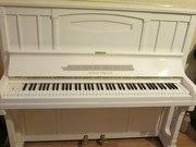 Купить пианино Petrof ,  Weinbach,  Rosler,  August Forster,  Steinway,