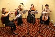 Живая музыка на праздник струнный квартет Октавия Киев.