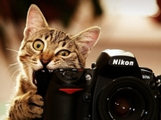 Компания Мой-сервис выполняет ремонт фототехники в Киеве