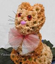 Цветочный котенок Киев
