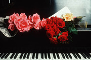 Настройка пианино