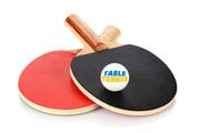 Инвентарь для настольного тенниса в опт и розницу.