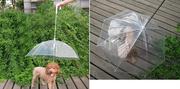 Зонт для собак – и комфортно,  и прикольно!