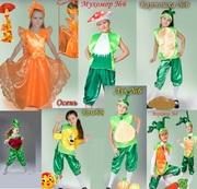 Карнавальные костюмы деткам,  Киев,  прокат