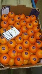 продаем мандарины из Испании - Овощи,  фрукты