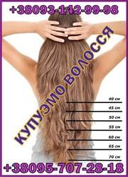 Купим волосы дороже всех ,  Продать волосы в первые руки Акция Цена !