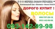 Дорого продать волосы в украине , продать волосы в киеве оплата высокая