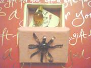 Броши:паучок из янтаря,  гномик со стразами,  в подарочных коробочках
