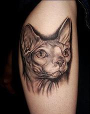 Студия Татуировки и Пирсинга