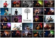 Школа гитары Serenada