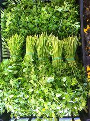 Свежая зелень из Испании