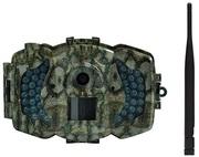 3G камера BolyGuard MG-983G-30M (охотничья)