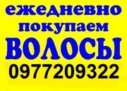 Куплю волосы Киев. Самая Высокая Цена Волос. Без Вычеса.