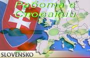 Работа в Словакии. По готовой польской визе