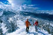 Гірськолижний тур у Карпати від туристичної фірми
