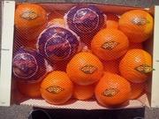 Апельсины оптом в Испании