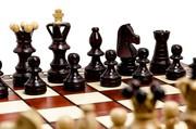 Деревянные польские шахматы опт Амбассадор