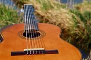 Начальные курсы на гитаре Мытищи Перловская  Тайнинская