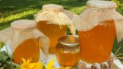 Мёд,  мед с санаторно-курортной зоны