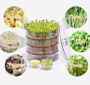 Спраутер для выращивания семян дома Sprouter ProVita,  Проращиватель