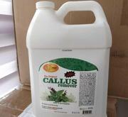 Гель для педикюра Callus Remover SpaRedi пр-во сша 3785 мл