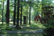 FREESTYLE CAMP - детский лагерь в Карпатах. Лето 2020.